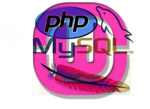Php Programları